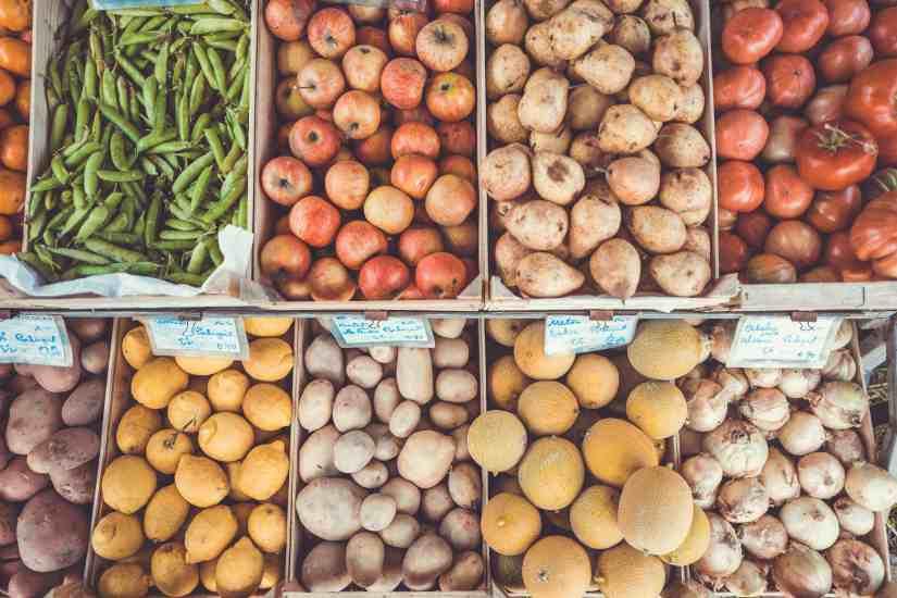 tips for vegan diet transition